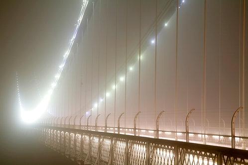 Fog Lights