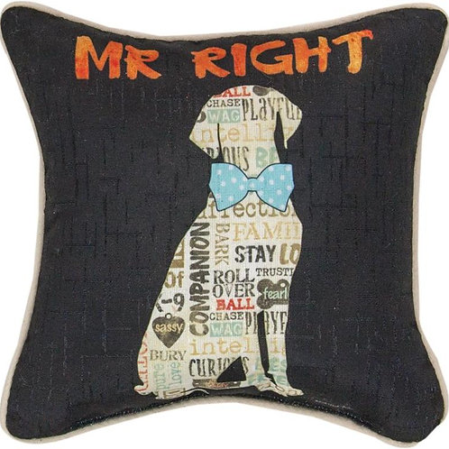 Mr. Right Dog Pillow