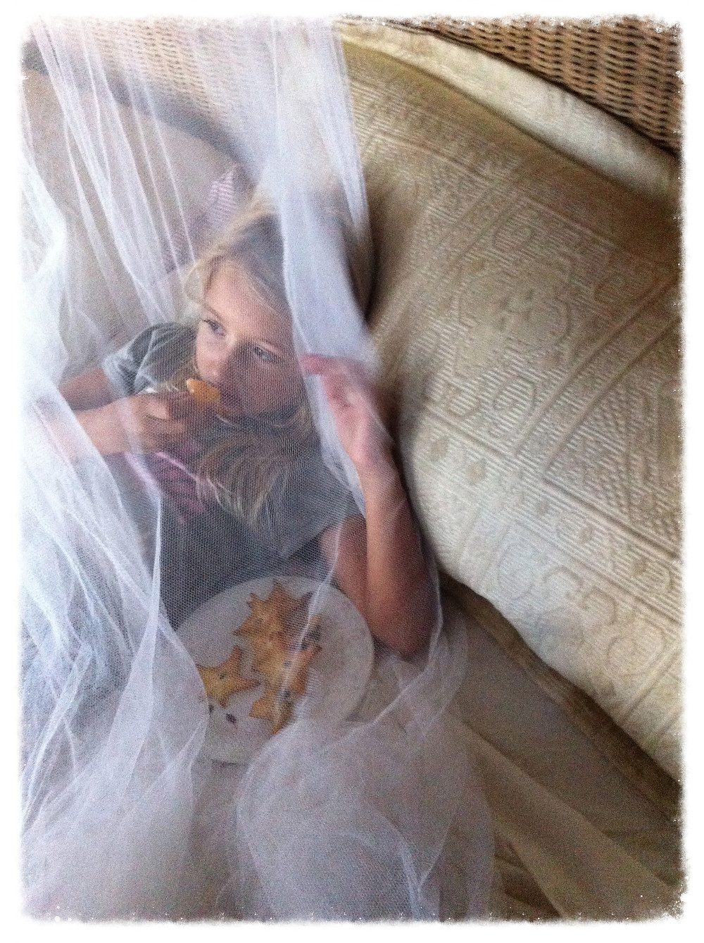 Piper, eating starfruit in her netting