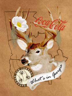 Georgia travel post card