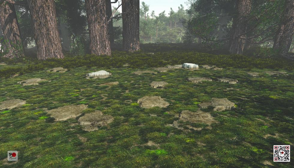 bakkubackgrounds_zoom_forest.png