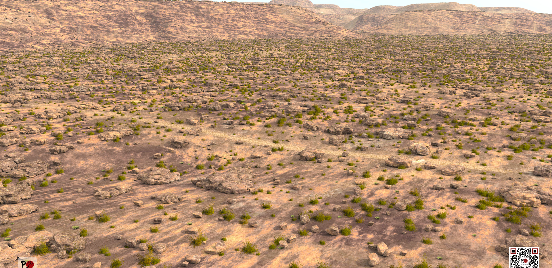 bakkubackgrounds_zoom_desert.png