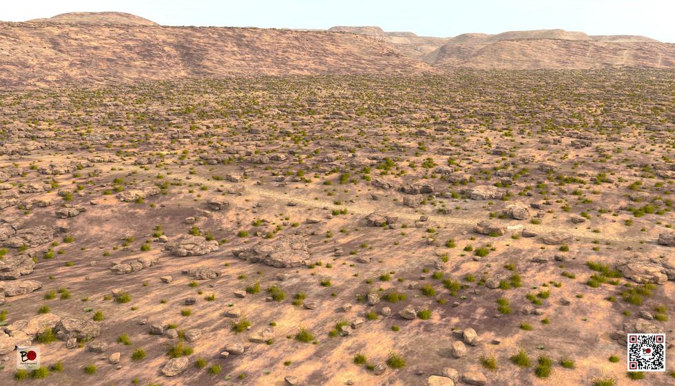 bakkubackgrounds_zoom_desert.png