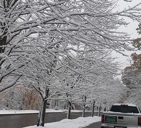 snow%20plowing_edited.jpg