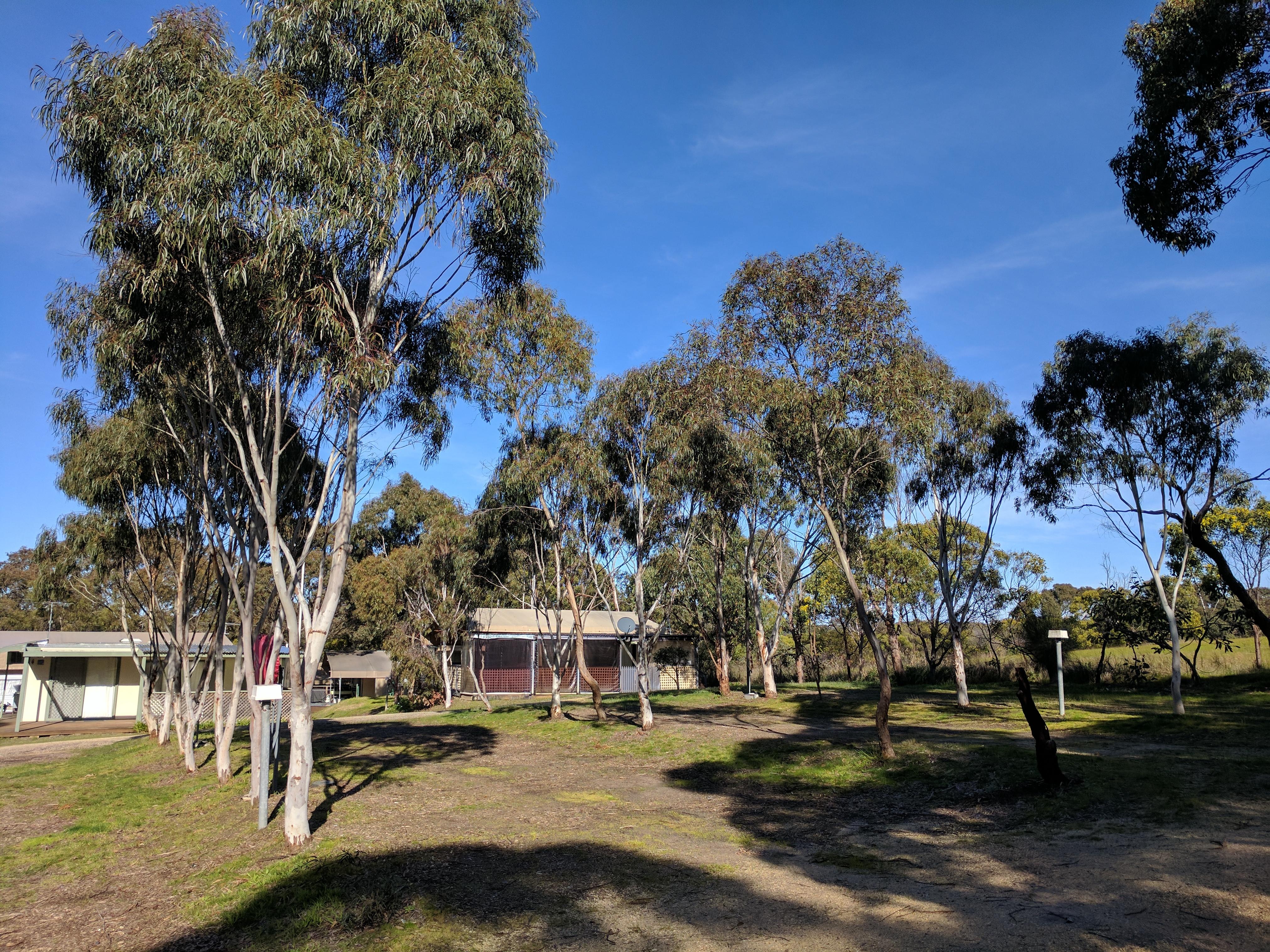 Jan Juc Caravan Park