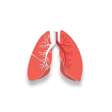 肺功能spirometer
