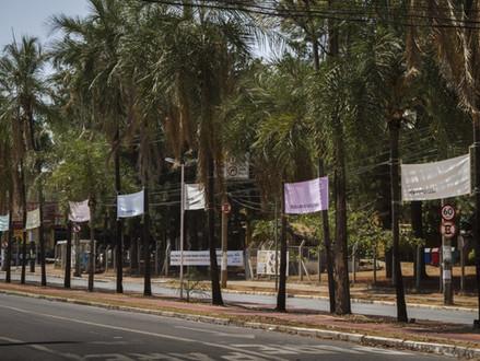 2o. Refluxo – Festival Experimental de Artes (Goiás)