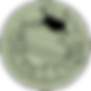 TreeFrogLogoGreenTransparent.png