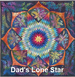 Dad's lone star Ricky Tims quilt