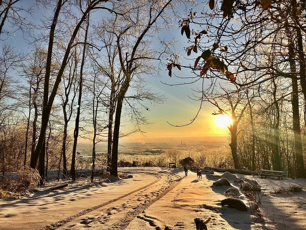 snowy sugarloaf.jpeg