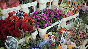 Florist - Winkelcentrum Groenhof-63.jpg