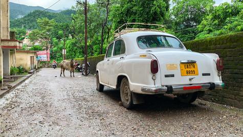 Viaje_Rishikesh_India_3.jpg