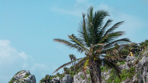 Viaje_Riviera_Maya_Mexico.jpg