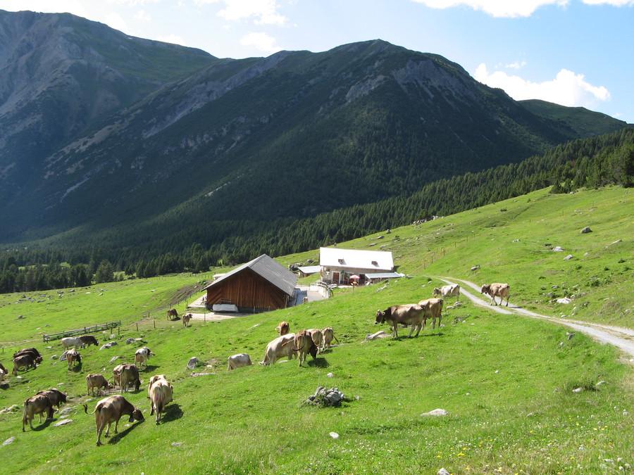 Hotel_Helvetia_Alpen