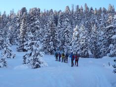 Wintertraumwochen - Schneeschuh 19.01.01. - 07.03.2021