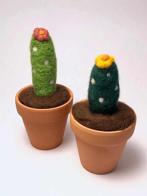 Art Box: Needle Felted Cactus (small)