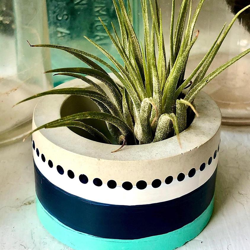 Make and Paint Mini Concrete Planters