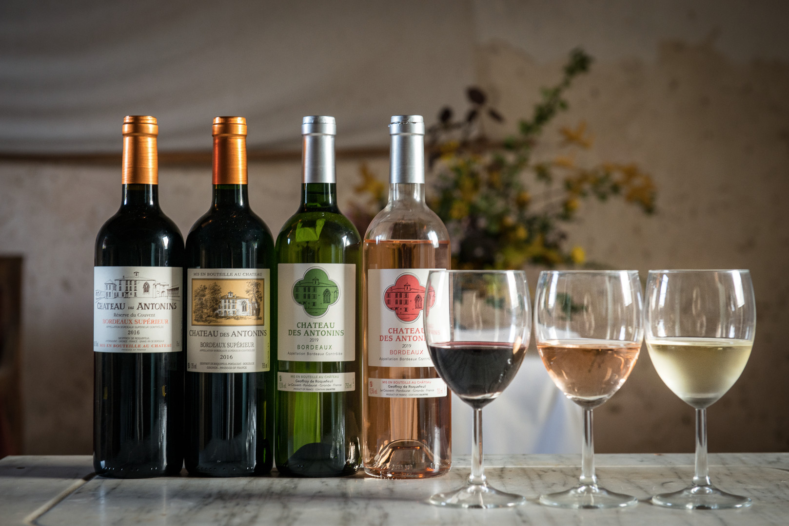 Contact:degustation vins.jpg