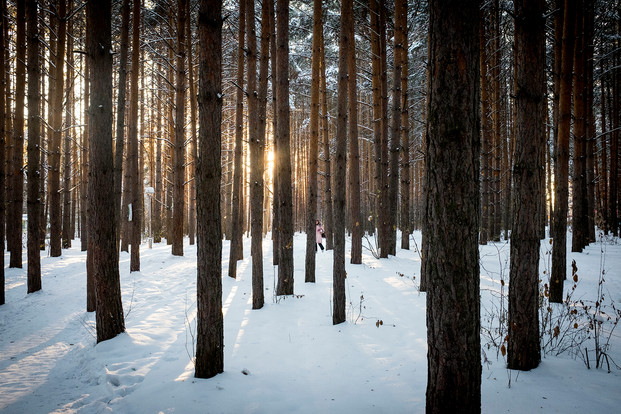Siberia from futur past06.jpg