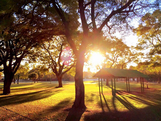 Myrtle Park.jpg