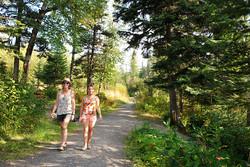 hike-woods