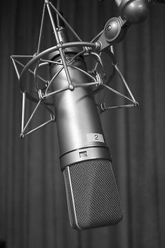 Neumann microphone repair