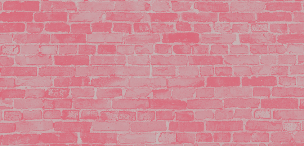 little red house web wall.png