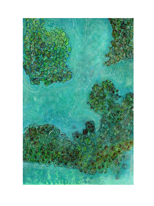 Bird eye reef green
