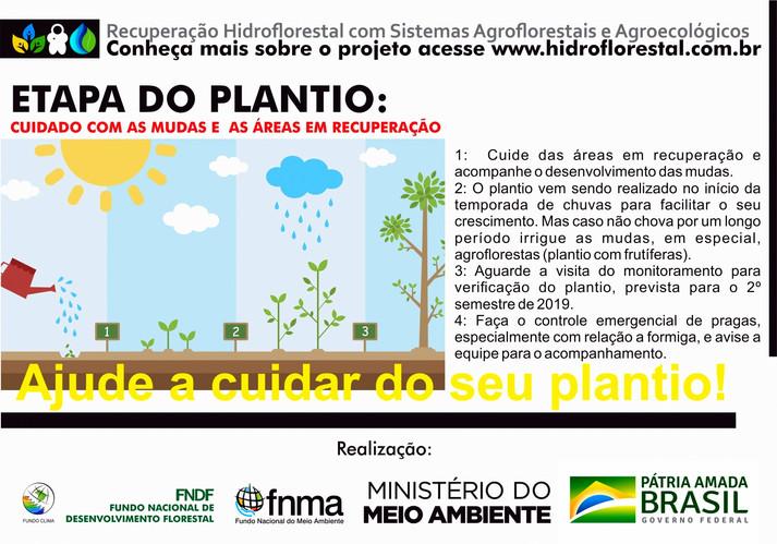 plantio etapa folder FRENTE.jpg