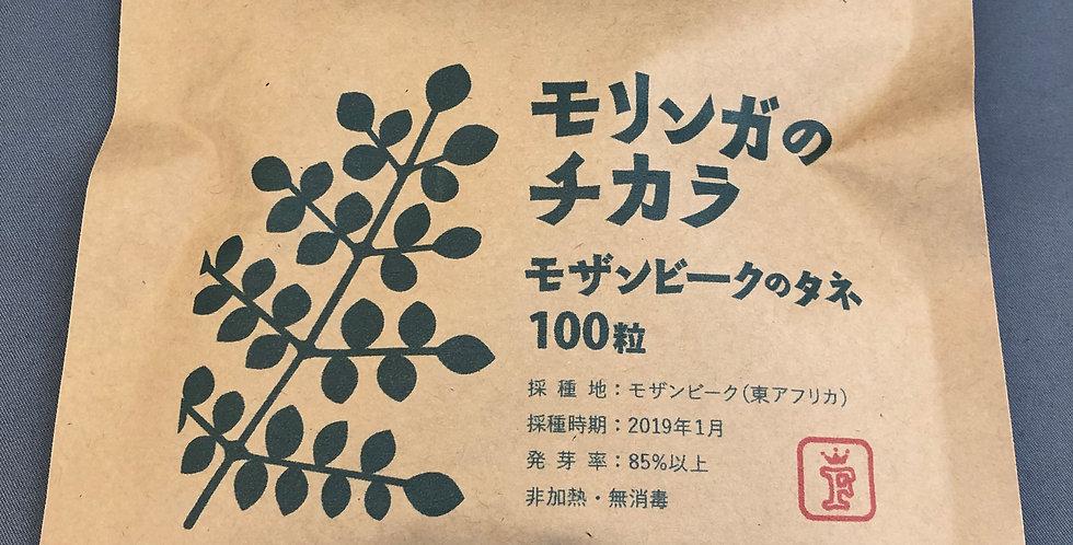 モリンガのチカラ モザンビークのタネ100粒