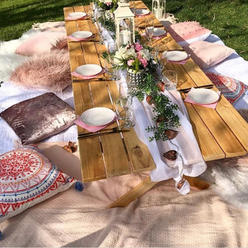 Picnic for 7-8 guests $350