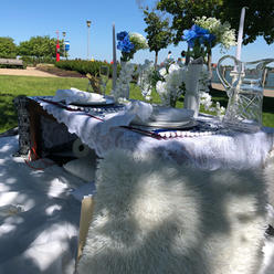 Picnic for 5-6 guests $275