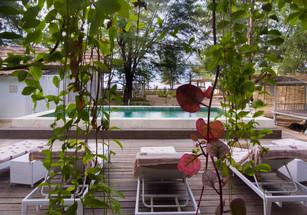 Coral Flora Villa Pool