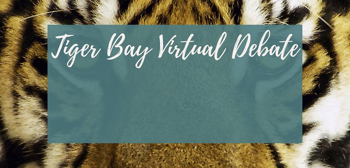 Tiger Bay Debate-3.png