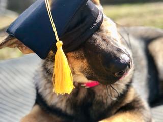 Putz Graduation