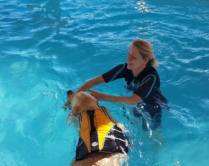 Schwimmen versus Unterwasserlaufband