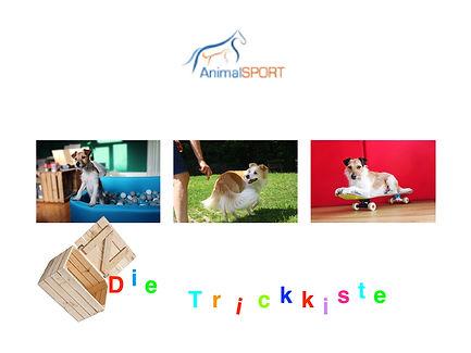 trickkiste 2.001.jpeg