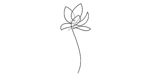 Free Lotus.jpg