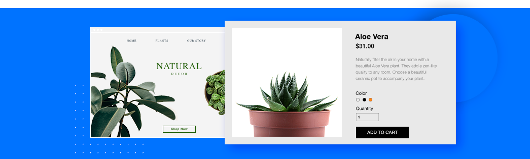 Online Store for Plants, Aloe Vera