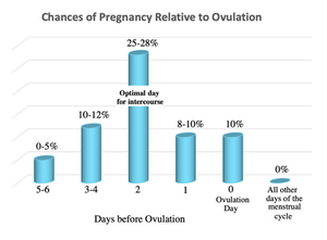 Chances of Pregnancy Relative to Ovulation.  Optimal day of intercourse is 2 days before ovulation.  Even on that day, there is only a 25-28% chance of getting pregnant.