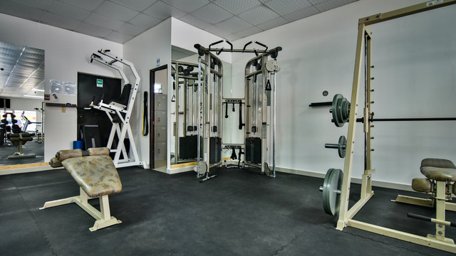 Lifefitness Crossover Dual Pulley and Smith machine