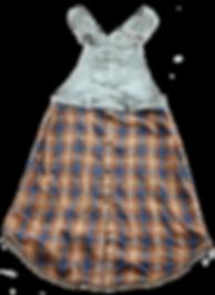 dungaree shirt inv.png