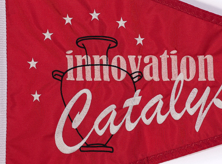 Innovation Catalyst, 2018
