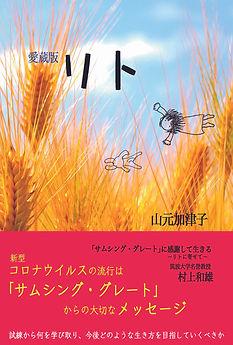 愛蔵版リト面表紙.jpg