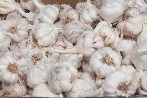 Locally grown garlic at the Bethlehem Farmers Market