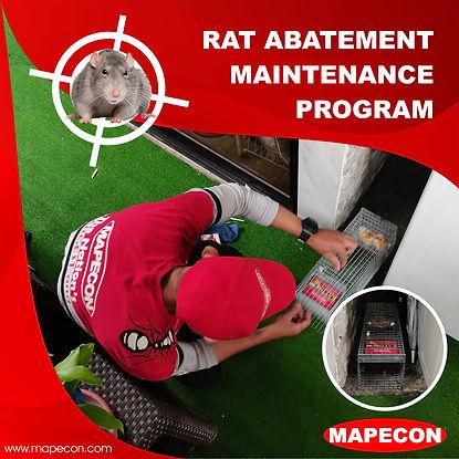 Rat Control.jpg