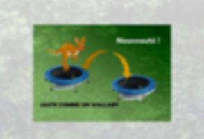 trampoline%25205_edited_edited.jpg