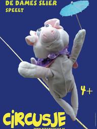 Poster Circusje