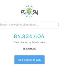 eco friendly salon