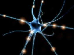 Follow-Up BioEnergetic Treatment